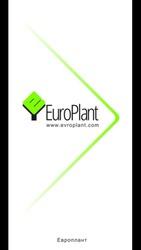 Продажа декоративных растений(хвойных и лиственных культур)