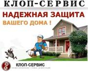 Уничтожение насекомых,  клопов,  тараканов в Москве и МО