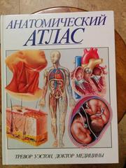 Анатомичсекий атлас